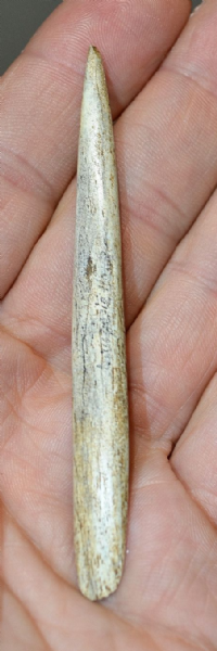 "An Extremely Rare Upper Paleolithic ""Magdalenian"" bone ""Sagaie"" Bevel end Spear point,  France. SOLD"